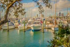 marina Stock Fotografie