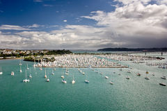 Marina from above. West Heaven marina in Auckland, New Zealand stock photography