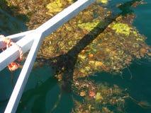 Marina abstraite Photos libres de droits
