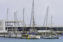 Marina in Arrecife Royalty Free Stock Photo