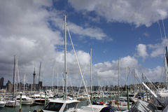 Marina with Auckland Skytower. Westhaven Marina with Auckland Skytower in the background. Blue sky with white clouds in the background Stock Images