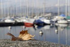 Marina in autumn Stock Photo