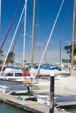 Marina avec la vue au pont en porte d'or Photos stock