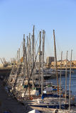 Sailboats moored in the harbor Royalty Free Stock Images