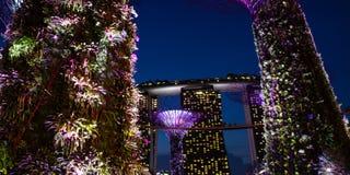 Marina Bay Sands dai giardini dalla baia Immagine Stock