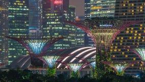 Marina Bay Sands, Gärten durch die Bucht mit Wolkenwald, Blumenhaube und supertrees Nacht-timelapse stock video footage