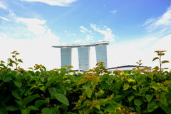 Marina Bay Sands on a green bed. royalty free stock photography
