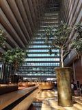 Marina Bay Sands, Singapore: interno Immagini Stock Libere da Diritti