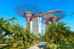Marina bay sands and Supertrees at Gardens by the Bay. Royalty Free Stock Photos