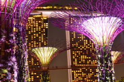 Marina Bay Sands Supertrees Royalty Free Stock Photography