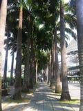 Marina Bay Singapore Royalty Free Stock Photos