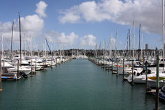Marina with Boats. Westhaven Marina with many boats. Blue sky with white clouds in the background Royalty Free Stock Photography