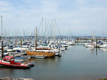Marina, Brixham, Devon. Royalty Free Stock Images
