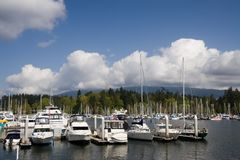Marina. Coal Harbour. Marina. Sailing boats. Coal Harbour. Vancouver royalty free stock images