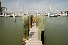 Marina in Corpus Christi Royalty Free Stock Photo