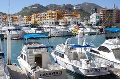 Marina dans Cabo San Lucas, Mexique Image libre de droits