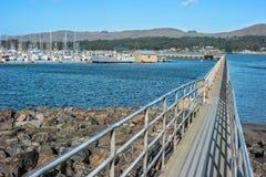 Marina de baie de Bodega photos stock