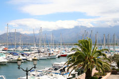Marina de Calvi. Photo stock