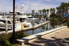 Marina de yacht de l'océan pacifique de la Californie du sud Photo stock