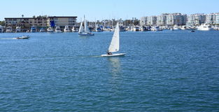 Marina Del Ray Royalty Free Stock Image