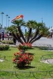 MARINA Di CECINA WŁOCHY, Maj, - 07, 2017: Largo Cairoli kwadrat i Fotografia Royalty Free