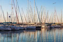 Marina with docked yachts at sunset. Ashdod royalty free stock photos
