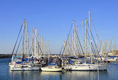 Marina with docked yachts, Tel-Aviv, Israel Royalty Free Stock Images