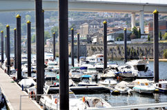 Marina on Douro river Stock Images