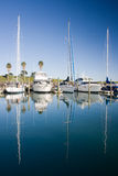 Marina on a early morning. Yachts and boats rest in Pine Harbor Marina, Auckland, New Zealand stock photos