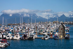 Marina and Fishing Boats, Alaska. Walking on docks through marina in Homer Alaska Royalty Free Stock Photography