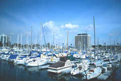 Marina Full of Boats. With buildings in the background against blue sky and clouds royalty free stock photo