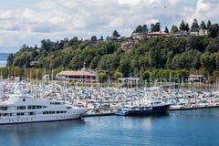 Marina i Elliott Bay Arkivfoto