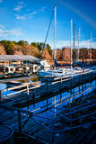 Marina 1 Royalty Free Stock Photo