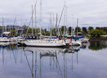 Marina on Lake Ontario. Bluffer's marina for boats on Lake Ontario Royalty Free Stock Images