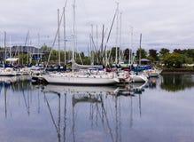 Marina on Lake Ontario. Bluffer's marina for boats on Lake Ontario royalty free stock images