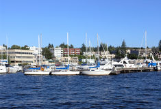 Marina on Lake Washington Stock Photo