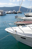 Marina with luxury boats Stock Image