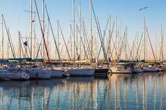 Marina med anslöt yachter på solnedgången Ashdod Royaltyfria Foton