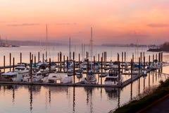 Marina med Mt Huvsikt längs Columbia River på solnedgången royaltyfri fotografi