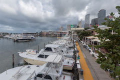 Marina in Miami Florida Stock Photo