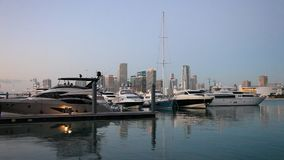 Marina in Miami, Florida stock footage