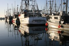 Marina Morning Stockbild