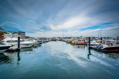 Marina na Charles rzece w Charlestown, Boston, Massachuset Zdjęcia Royalty Free