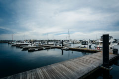 Marina na Charles rzece w Charlestown, Boston, Massachuset Fotografia Royalty Free