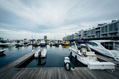 Marina na Charles rzece w Charlestown, Boston, Massachuset Obraz Royalty Free