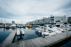 Marina na Charles rzece w Charlestown, Boston, Massachuset Zdjęcia Stock