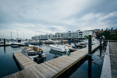 Marina na Charles rzece w Charlestown, Boston, Massachusetts Obrazy Royalty Free
