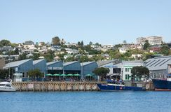 Marina, Napier Zdjęcia Royalty Free
