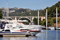 Marina på floden Douro royaltyfri bild
