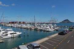 Marina på Tauranga i Nya Zeeland med många förtöjde yachter fotografering för bildbyråer